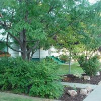CNA Garden