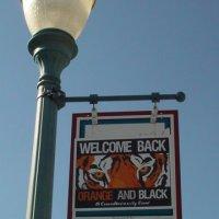 OTNA Street Banner 1