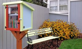 NWP Mini-Grant Program Helps Fund Neighborhood Library